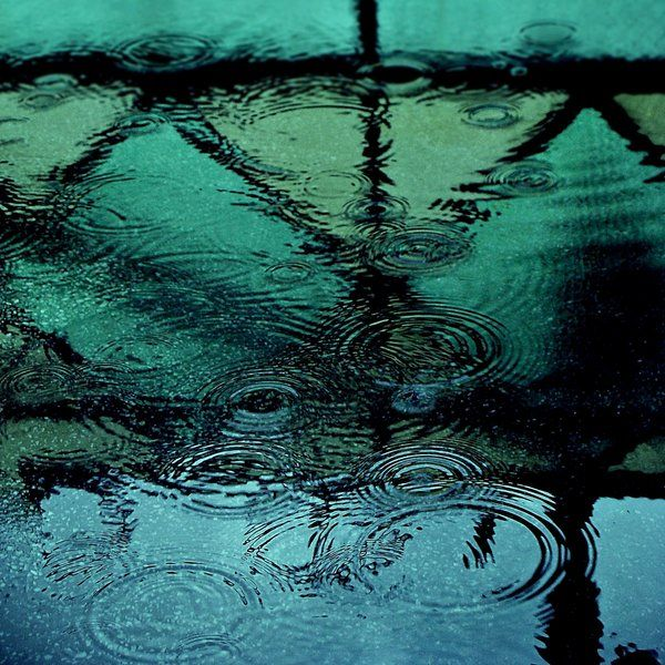 Ripples: Water, Reflection, Color, Green, Posts, Raindrops, Rain Drops, Rainy Days, Photography