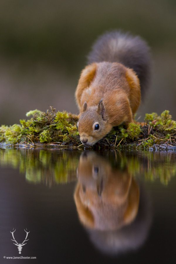500px / It's the weekend, time for a drink! by James Shooter