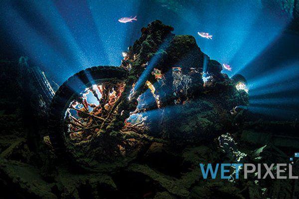 Underwater Photography Masterclass by Alex Mustard ...