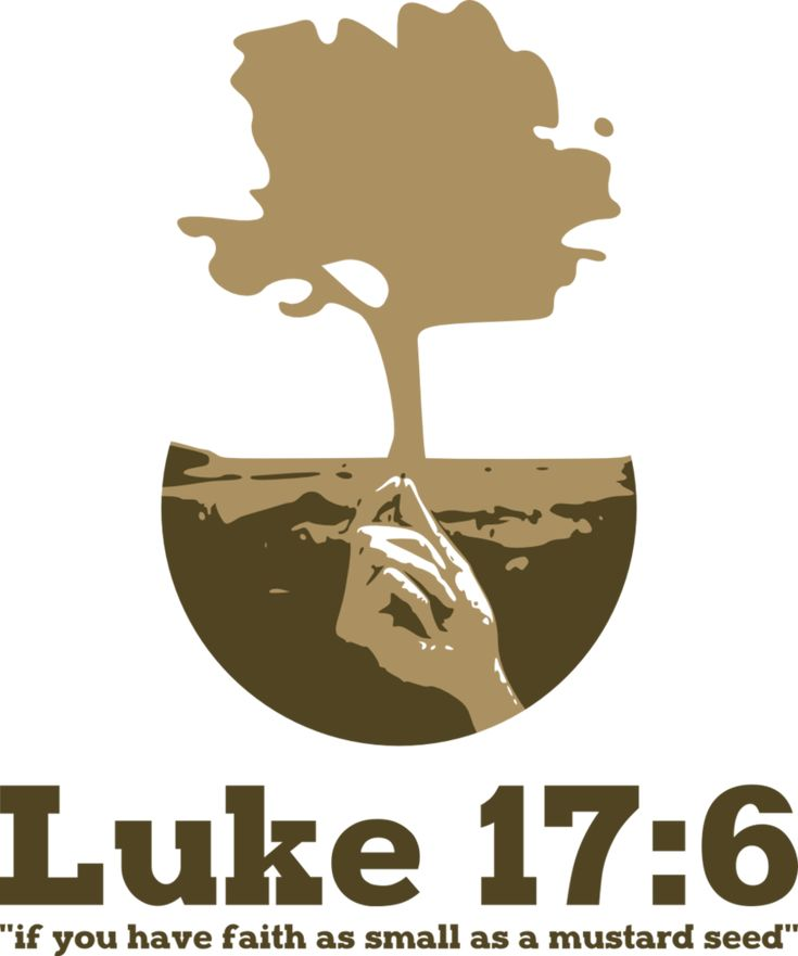 "Luke 17:6 And the Lord said, ""If you had faith like a grain of mustard seed, you could say to this mulberry tree, 'Be uprooted and planted in the sea,' and it would obey you."