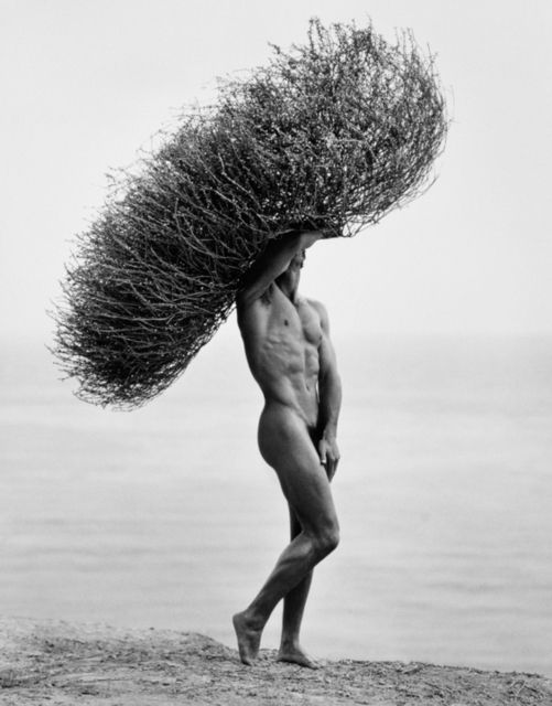 Herb Ritts, Male Nude with Tumbleweed, Paradise Cove (1986)
