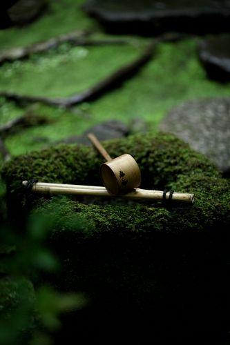 garden / kyoto                                                       …