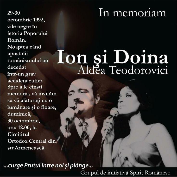 Ion and Doina Aldea Teodorovici