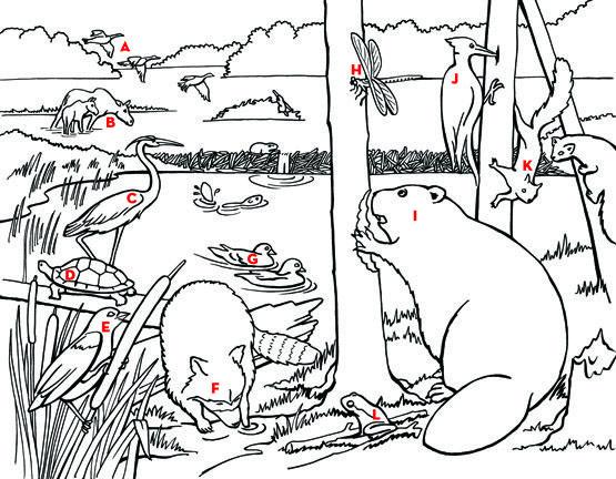 Grassland Children S Publishing Blogs Prairie Storms Blog Posts