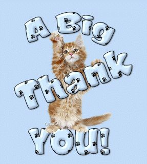 ❤️️Thankyou to the Best Cooney Lovers Ever For Following My Board Mainecoon! And Thank You For Your Wonderful Pins As Well....