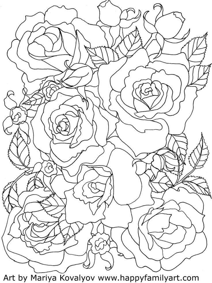 valentines day roses flowers free printable adult coloring pages - Coloring Stencils
