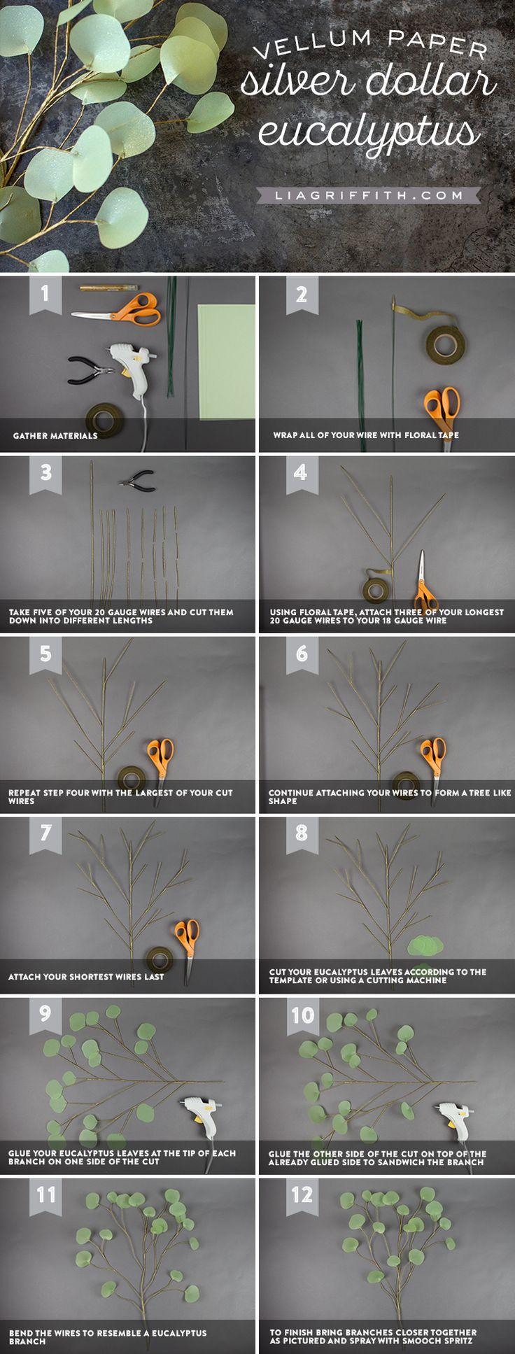 DIY Eucalyptus Branch Tutorial
