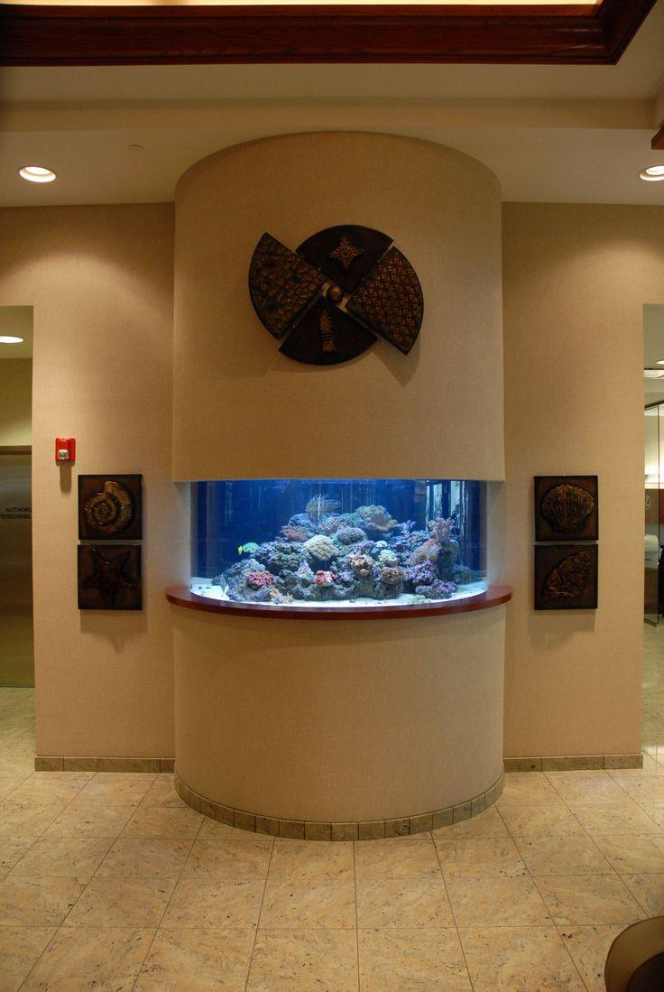 Fish aquarium in chandigarh - Reef Live Aquariums Saltwater Fish Tanks