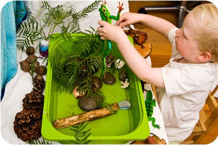 141 best images about preschool frogs and turtles on for Small frog pond ideas