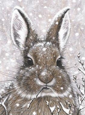 ❧ Illustrations Petits lapins ❧ by Marjolein Bastin