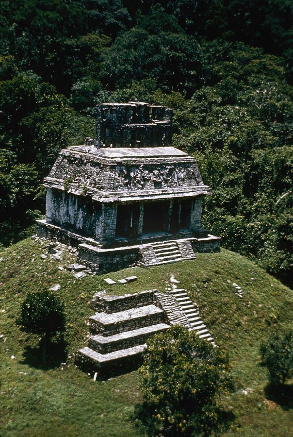 Palenque, Mexico http://fineartamerica.com/featured/mexico-palenque-granger.html