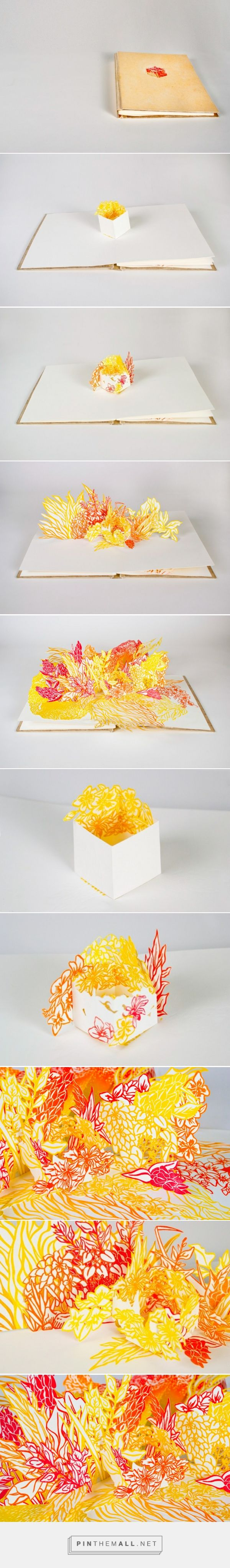 Cube Pop-Up Book on Behance
