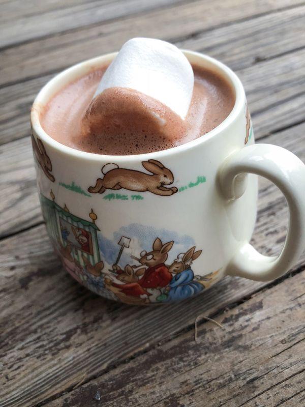 Dorie Greenspan Real hot chocolate on eatlivetravelwrite.com