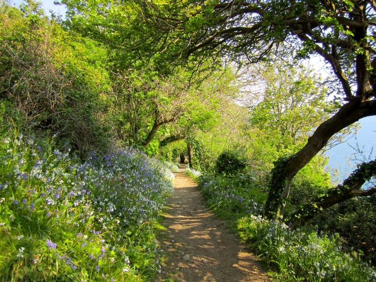 Walking the cliffs - Guernsey Island