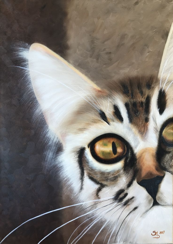 Peek a boo Cat A2 Textured oil
