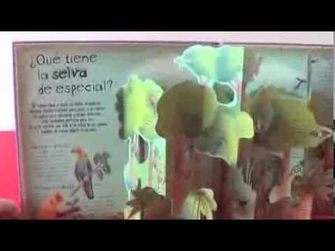 How Animals Live pop up book by Christiane Dorion