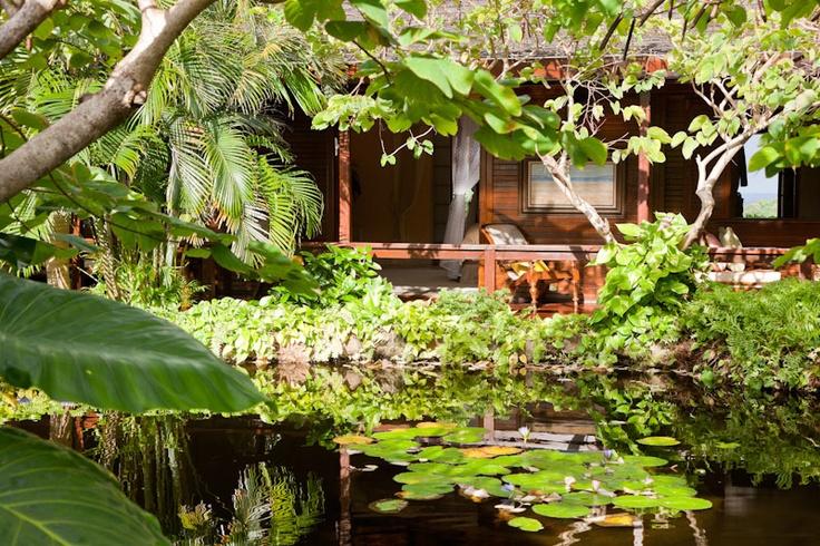 Mustique Island: The Blackstone Rental