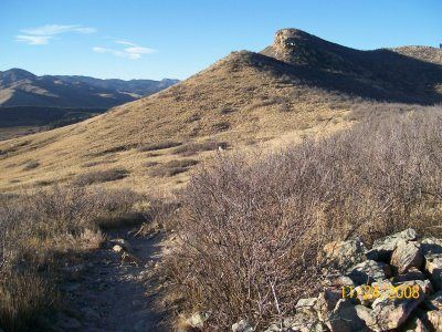 Dog friendly hikes in Fort Collins, CO