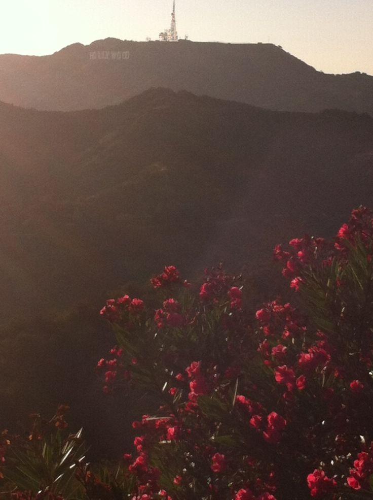 #Hollywood hills. #Голливудские холмы.