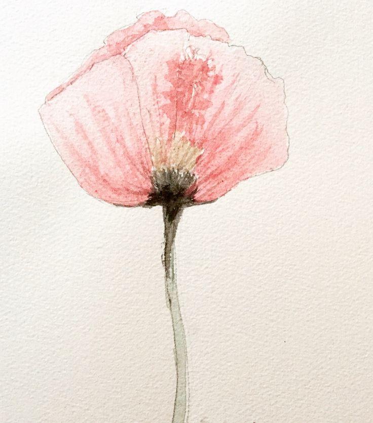 Poppy - (Elin Holm) watercolors