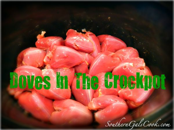 Doves In the Crockpot- SouthernGalsCook.com If you have hunters in your family, you need this recipe.