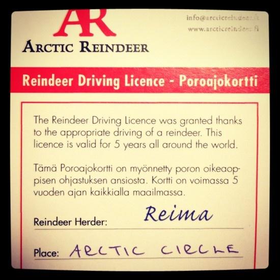 Reindeer Driving Licence