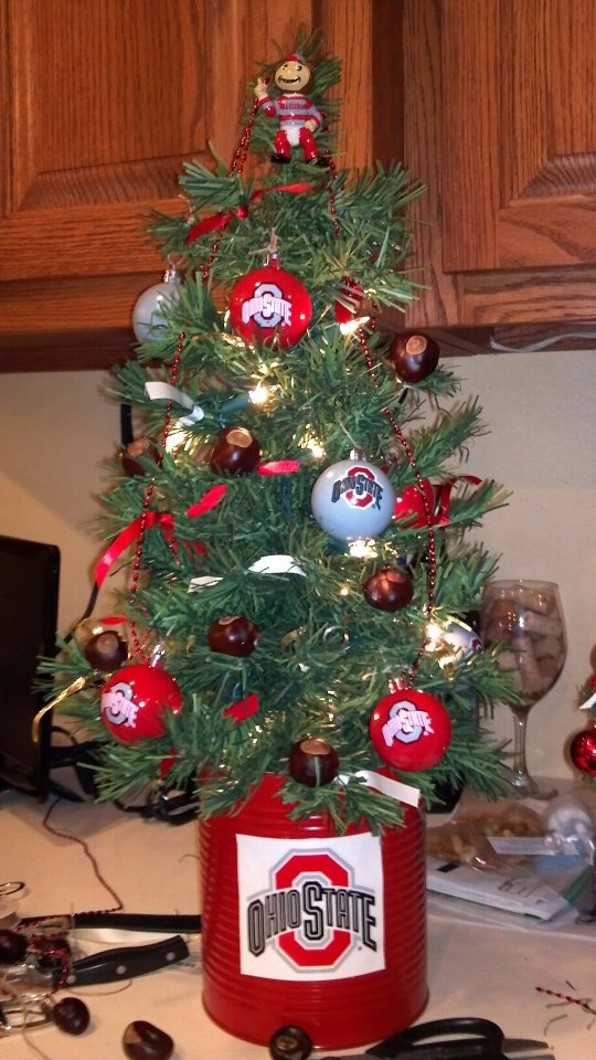Ohio State Buckeye Christmas Tree. I will have this in my kitchen this Christmas