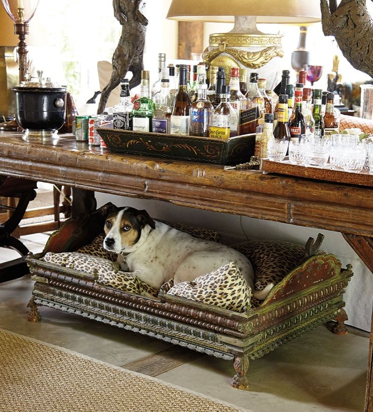 Pet Friendly Home Decor: 156 Best Images About Bunny Williams On Pinterest