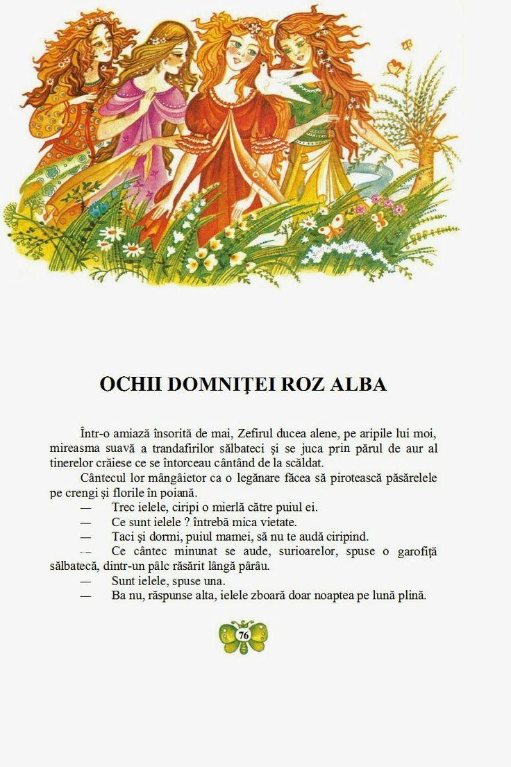 Elena Boariu - Craiasa de borangic