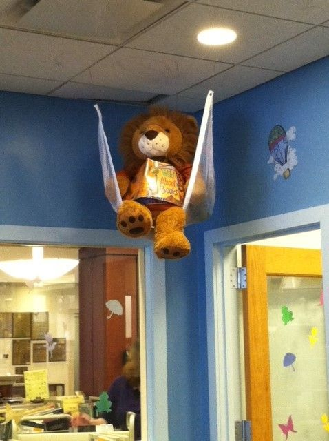 Our Library Lion hanging out in his hammock, reading a great book.