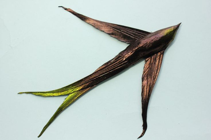 Birds - Vintage Feathers
