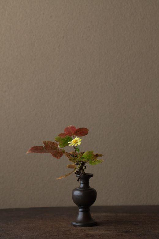Beautiful autumn colours | Ikebana & Chabana | Ikebana ...