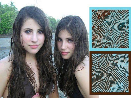 ... Tienen los gemelos idénticos las mismas huellas dactilares.