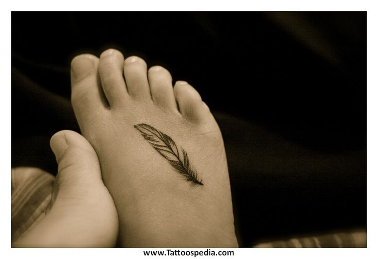 Feather Tattoo Designs 4