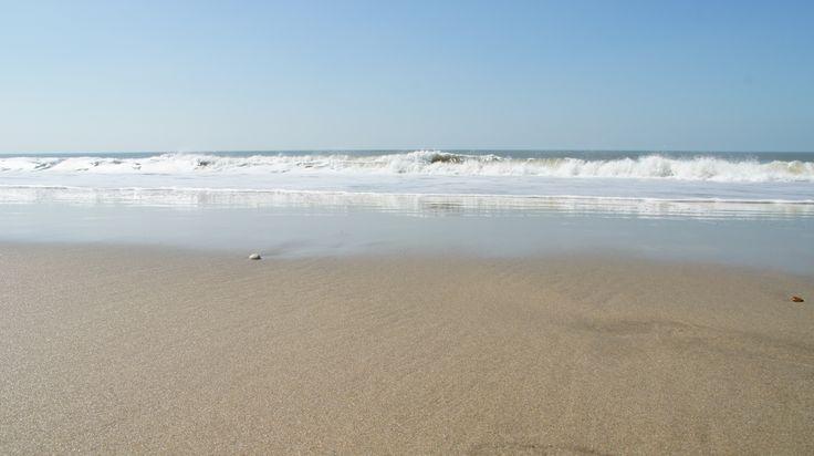 Plage d'EURONAT, 1.5 km de plage naturiste, 2 baignades surveillées en saison, et même une plage où les chiens sont les bienvenus !