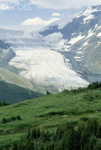 Columbia Icefield (Athabasca Glacier, icefields parkway, bow lake, crowfoot glacier, peyto lake, brewster snocoach tours)