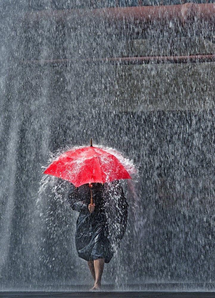 "seasonalwonderment:""Rainy Day"" ~ Photography by Ferdi Doussier"