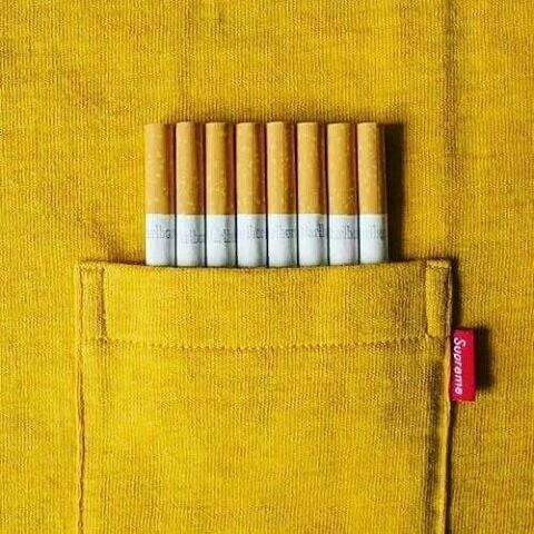 yellow tumblr