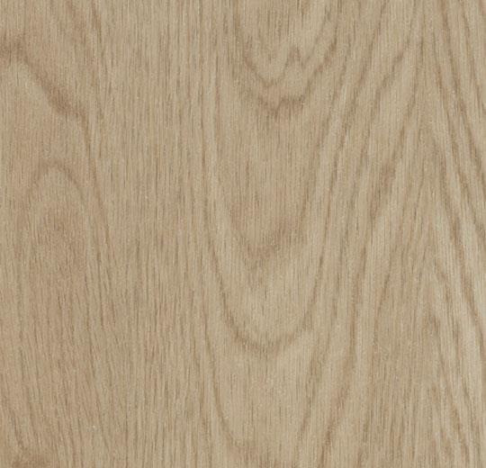 1604 whitewash elegant oak