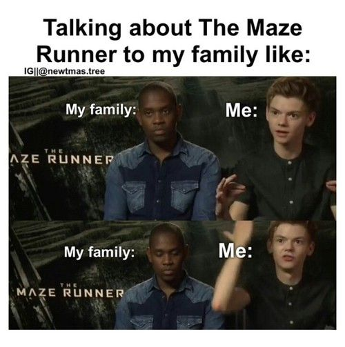 Funny TMR/TST/TDC Quotes - The Scorch Trials- Newt and Minho