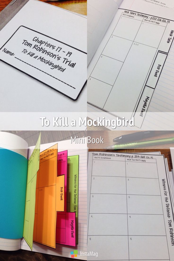 To Kill a Mockingbird interactive notebook activity for chapters 17-19 (Tom's trial). See http://www.teacherspayteachers.com/Product/To-Kill-a-Mockingbird-Interactive-Notebook-Trial-Organizer-Ch-17-19-1595250