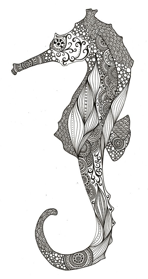 Seahorse<33