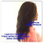 Crochet Braids New Jersey : Tree Braids- tree braids SmallMedium size in New Jersey.