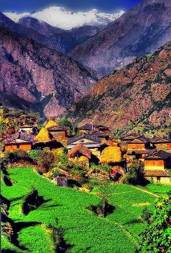 Village près de Gorapani (Népal)Près De, Village Près, Beautiful Places, Gorapani Népal, Beautiful Locations, Beautiful Nepal, Travel Collection, Travel Buckets, De Gorapani