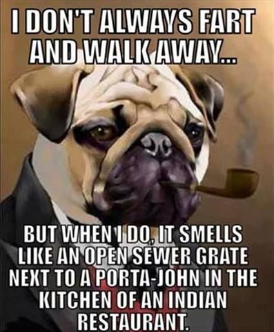 dog farts are gross!!!