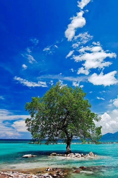Mali beach - Alor island - east nusa tenggara - indonesia