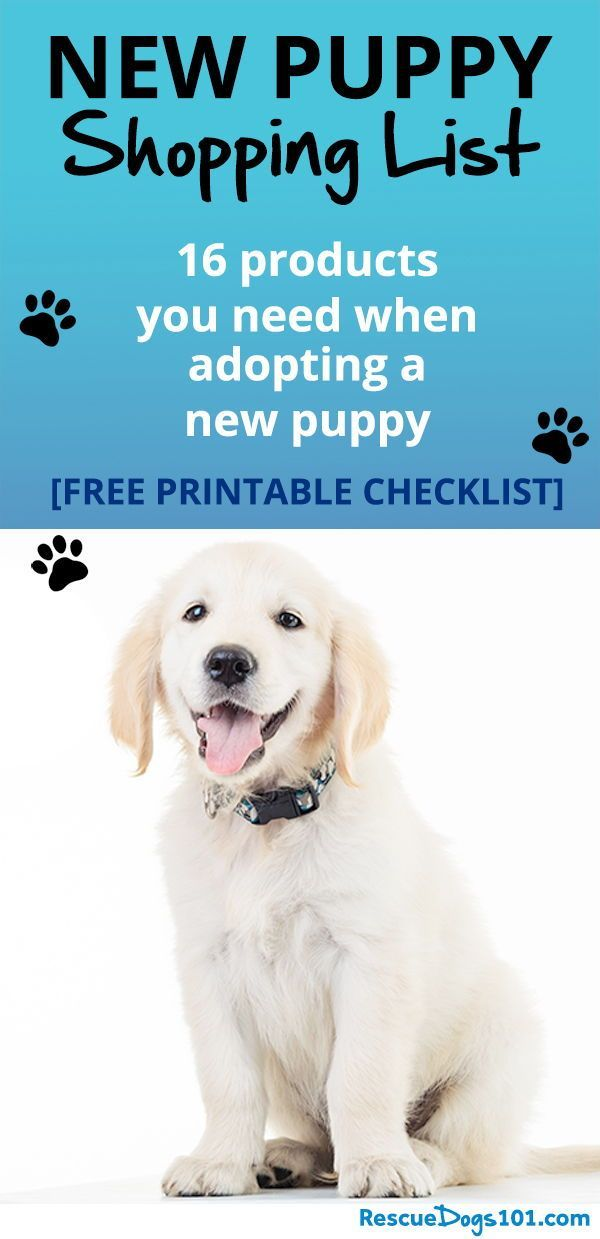 New Puppy Shopping List New Puppy New Puppy Checklist Bathing