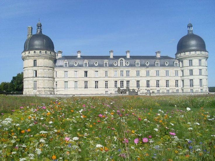 Flower meadow at Chateau  de Valencay