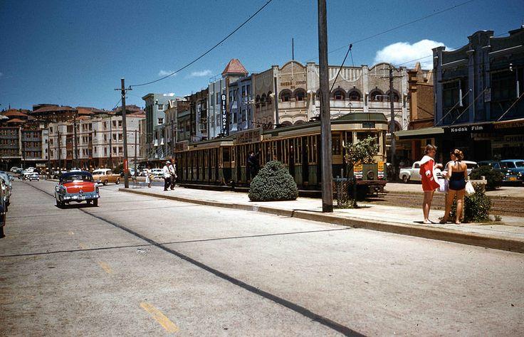 1959 TRAMS AT BONDI BEACH | Flickr - Photo Sharing!