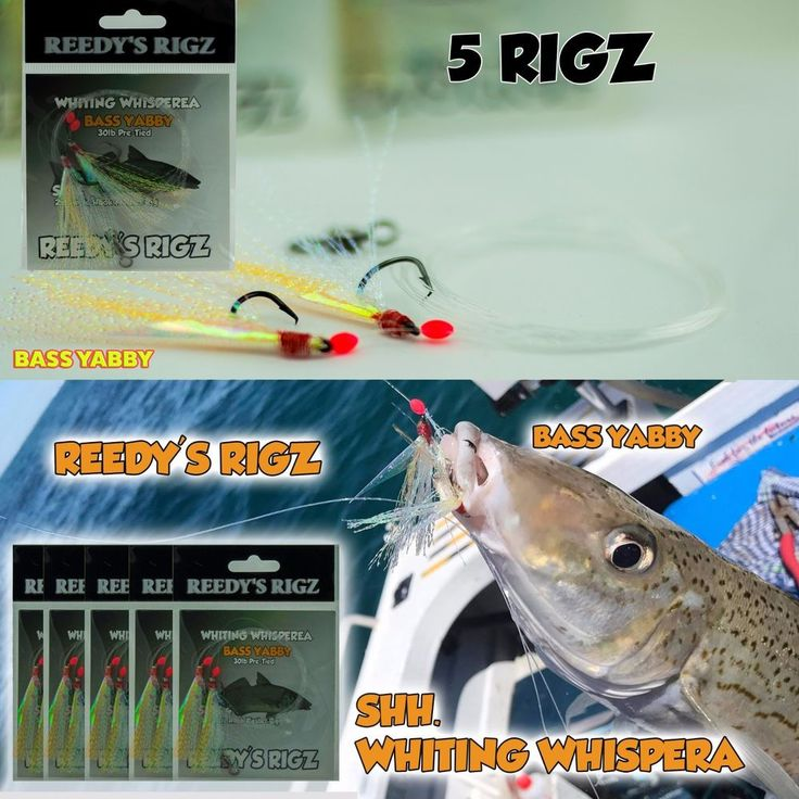 5 Whiting rig Line Lure Bream sze #4 Hook Circle Sucide Snapper Flathead rod fly